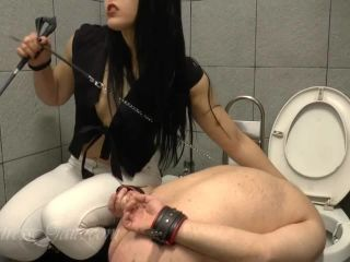 alexis grace femdom Mistress Gaia – Punishing my toilet slave, whipping on femdom porn