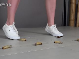 3 sneakers sh grb