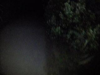 cumonanna – Anna Li – Shared Asian Wife Gets 4 Cumloads