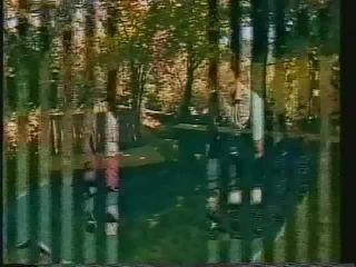 Swedish Erotica 375 Day in the park 1970's