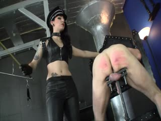 Cybill Troy - Mistress Cybill Troy - Caned Workhorse - corporal punishment on bdsm porn
