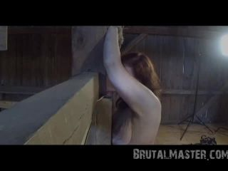 Brutal Master Cow – Bullwhipped Bitch (082416)