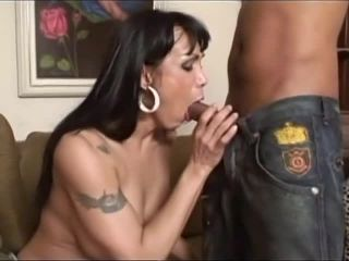 Sexy Horny Shemales #5, Scene 3  | transsexual | shemale porn