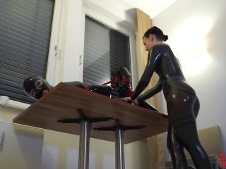 Give and Take Hogties