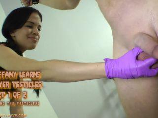 ballbustinfootlovin  miss tiffany  miss tiffany learns to skewer testicles  ballbustinfootlovin