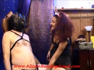 Aliceinbondageland – Deck The Balls Part 2 – Kinky Xmas Tree Nipple Clamp Ornaments