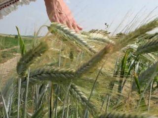 Jana Volkova – first anal: lady of the lake 1080p
