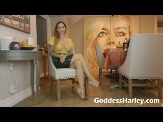 femdom - Goddess Harley – Bully Boner Party