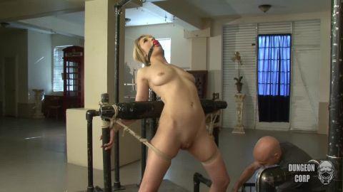 Courtney Shea - Disobedient Courtney (720p)