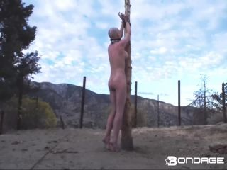 rachel Greyhound - Whipping Post (170.31 Mb, Mp4, )