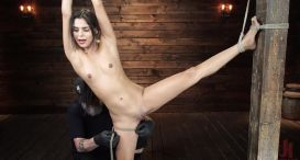 Katya Rodriguez: Hogtied Newcomer Bound and Tormented in Bondage
