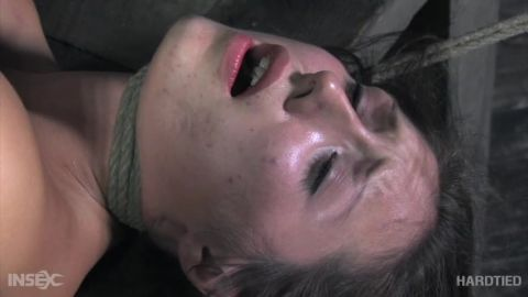 Sister Dee - Worn Out (478p)