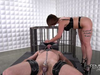Ivy Libelle – VICIOUS FEMDOM EMPIRE – Pleasure Puppet – Mistress Ivy