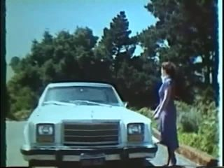 Swedish Erotica 308 Flat Tire 1970's