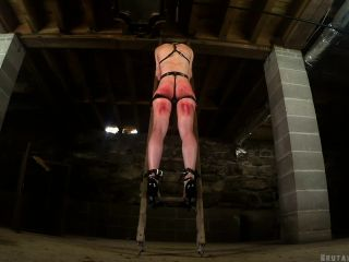 Greyhound – On The Ladder In The Dungeon!!!