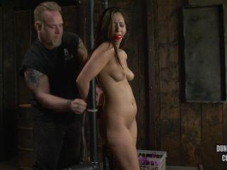 A Fine Day of BDSM - Reena Sky