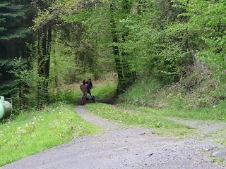 Mistress Lady Renee - Sulky Pony (720 HD) on masturbation porn pvc femdom
