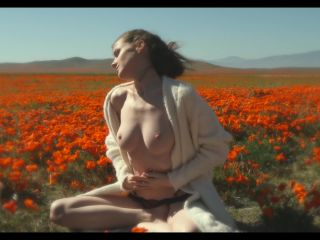 Emily Bloom - Poppies