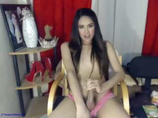 Webcam transsexual models compilation, transsexual on shemale porn