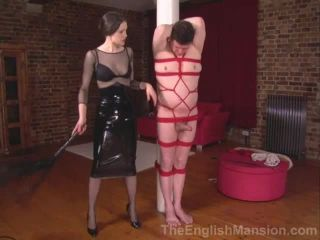 Tied, Teased and Milked