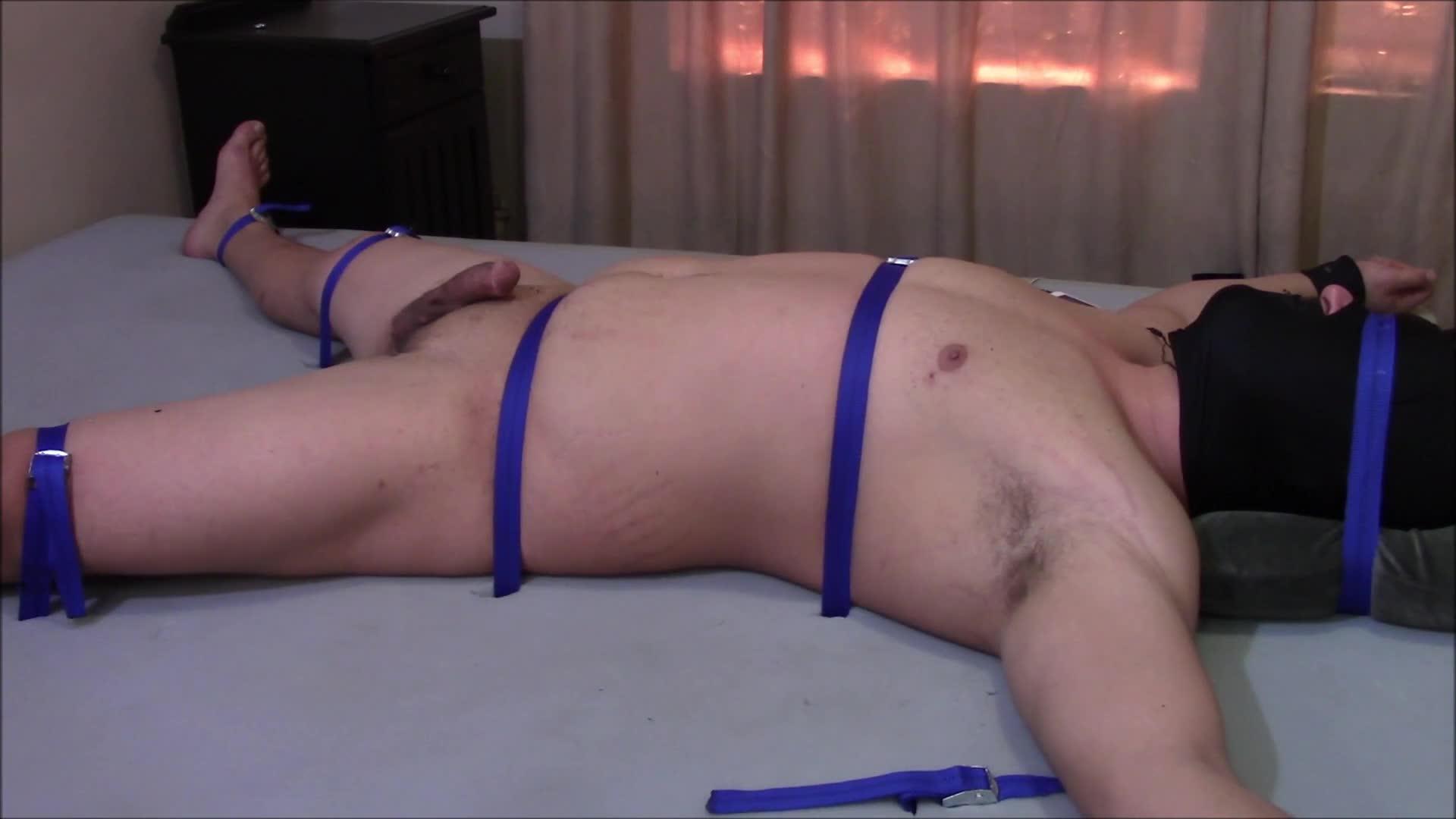 mój penis 26 cm ile lat pojawia się pierwsza erekcja