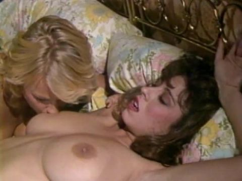 Christy Canyon Screws The Stars 1980's