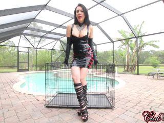 Porn online ClubDom - Mistress Michelle POV femdom