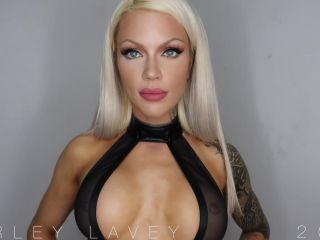Online Tube Harley Lavey in Beta Tax Ripoff - femdom