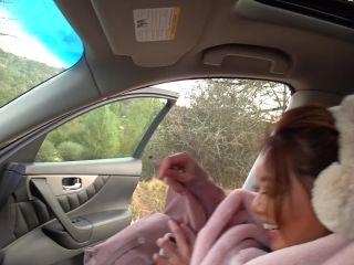 Ayumi Anime - Fuck A Fellow Passenger - Anal With Asian