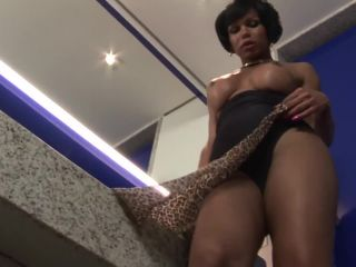 Online shemale video Elegant Tranny Brisa Plays with Her Sexy Lady Cock