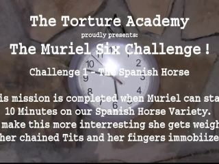 The Muriel 6 Challenge 1 – The Spanish Horse