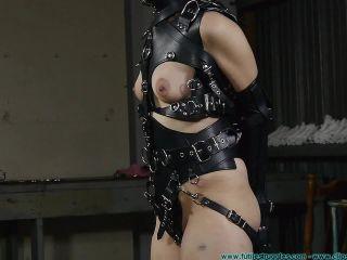 Porn online Rachel The Pony Girl 2 – The Harness