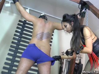 Femdom – Mistress Tangent – Just Getting Started