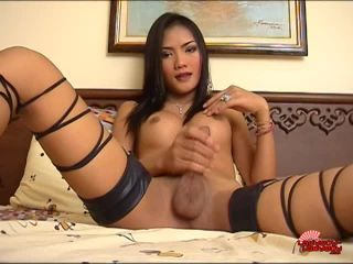 Online shemale video Sexy Tuk Jacks Off