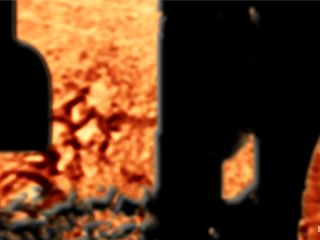 [Rain DeGrey ] 'THE RANSOM' A Hogtied feature movie. A fantasy BDSM abduction movie starring Rain DeGrey - May 24, 2011