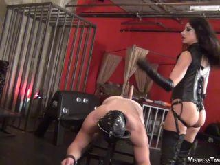 goddess serena femdom Mistress Tangent: Probe Position – Mis-Tangent, Female Domination, ass fucking on strap on