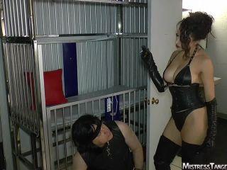 Mistress Tangent  Spit Stooge  Spitting