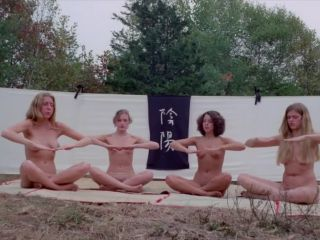 The Vixens of Kung Fu 1975